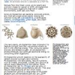 whatarephytoplankten